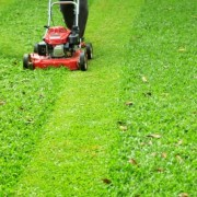 Use these Smart Mowing Tips to Protect Your Lawn