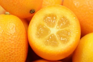 Four Miniature Fruit Trees You Can Grow Indoors