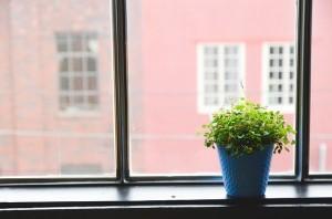 window-593364_640