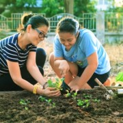 Mother and daughter planting vegetable garden